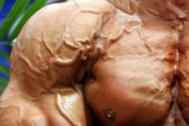 get-ripped-outstanding-bodybuilder