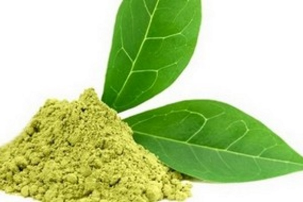 Link-of-green-tea-extracts-to-liver-injury-raises-age-old-question-How-much-of-a-good-thing-is-too-much_mobile_large
