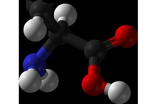 amino_acid-420x369