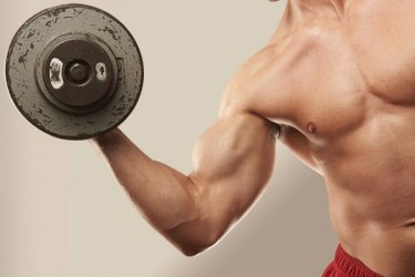 main-the-workouts-for-big-arms-in-four-weeks