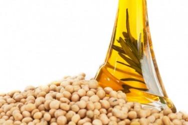 soybean-oil-3-e1355760074406
