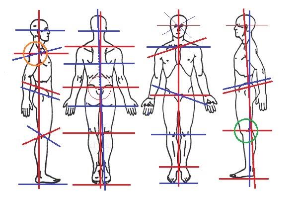 Body Diagram - Copy