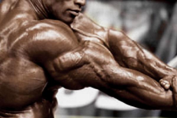 Building-Bodybuilder-Triceps