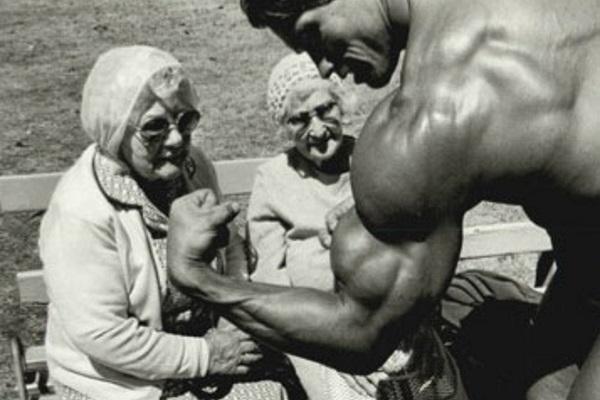 arnold-schwarzenegger-biceps