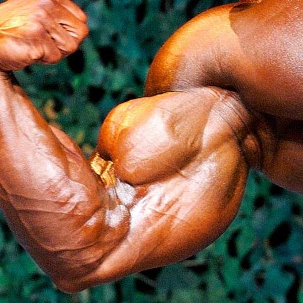 biceps-position-des-mains