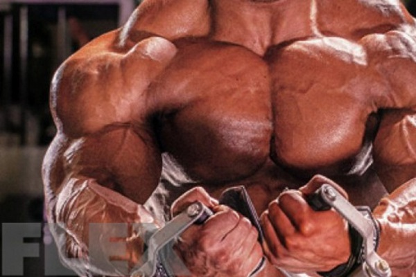 big-ramy-chest-cable-flyes
