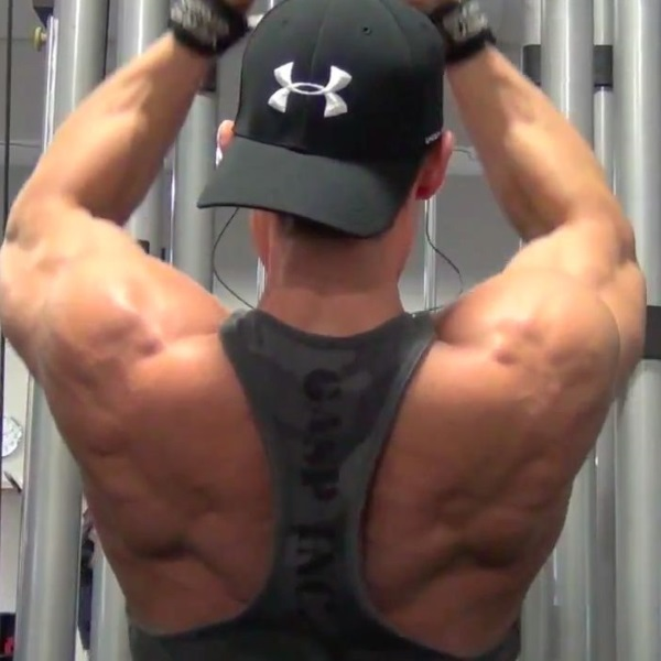 cohn-pulldowns