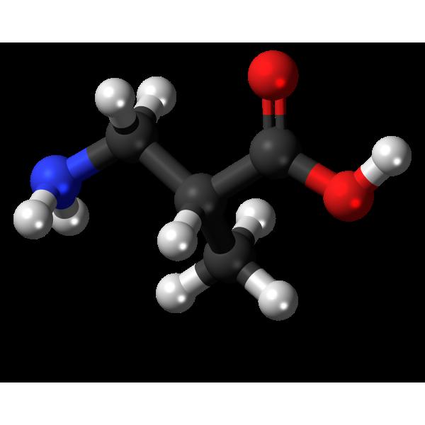 3-aminoisobutyric-acid