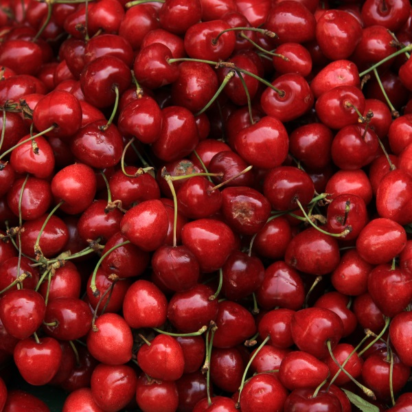 Cherries at a provencal market in France