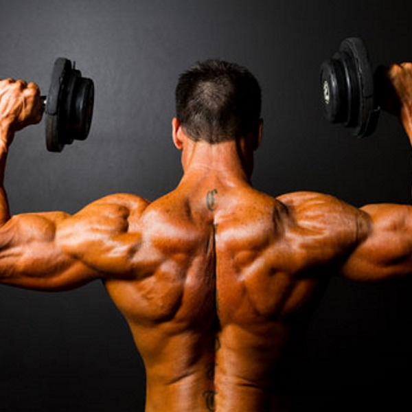 Shoulder-Workout-For-Beginners
