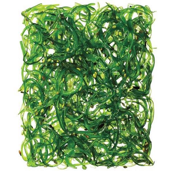 seaweed_main