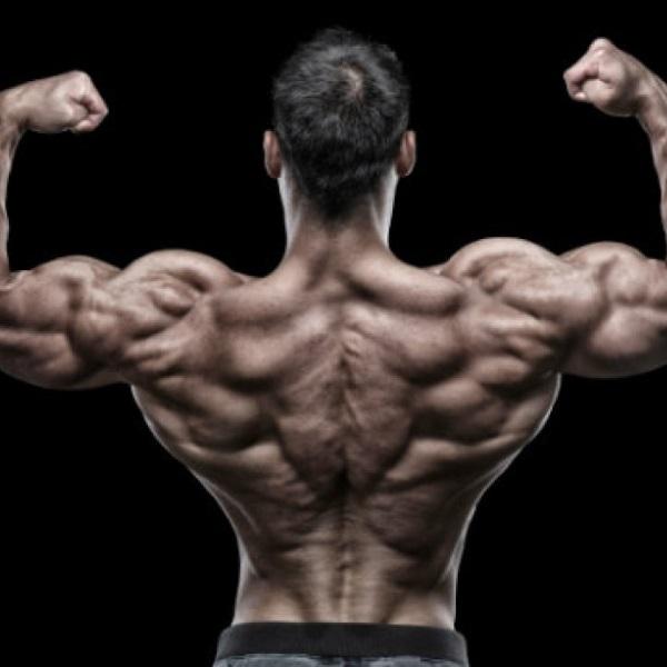 back-pose
