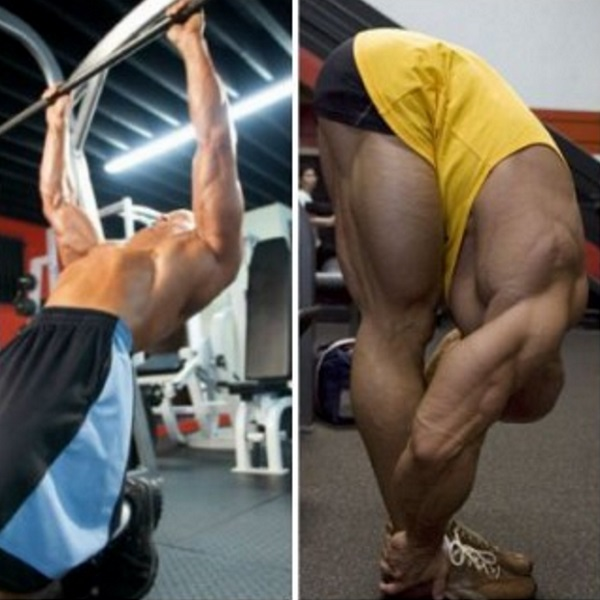 stretch-muscle-growth-success-660x330
