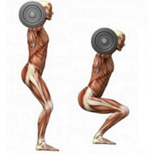 weights-are-better-than-cardio-for-fat-loss-660x330