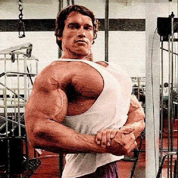 Arnolds-Chest-Day