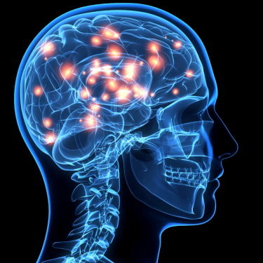 web-brain-getty-c-DONTUSEAGAIN