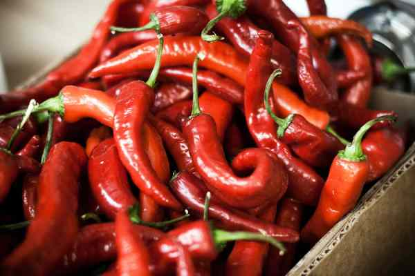 capsaicin_benefits