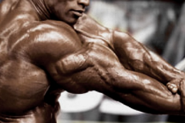 Building-Bodybuilder-Triceps
