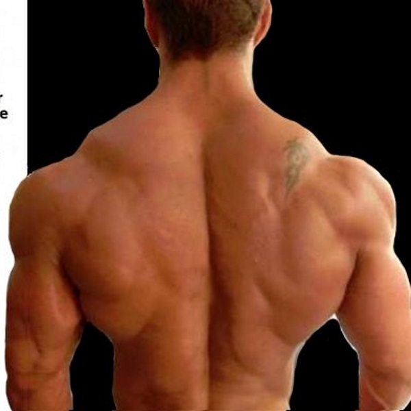 tips-to-upper-back